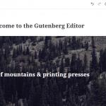 Novedades en WordPress 5.0 - Todo lo que necesitas saber
